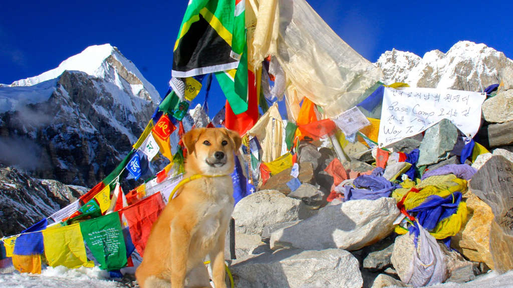 Rupee, Mount Everest
