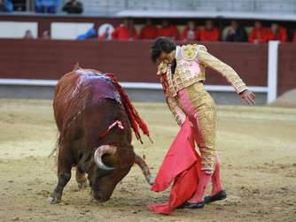 Spanish matador Curro Diaz performs a pass on a bull during the San Isidro bullfight festival at Las Ventas bullring in Madrid on March 20, 2016. / AFP PHOTO / ALBERTO SIMON