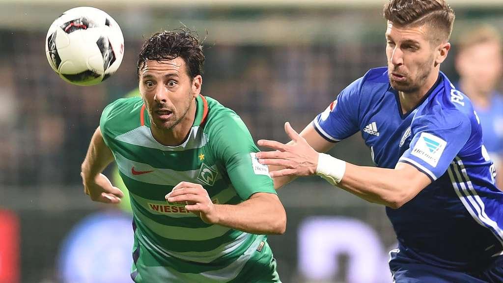 Stöger gewinnt 100. Bundesliga-Spiel gegen Bremen