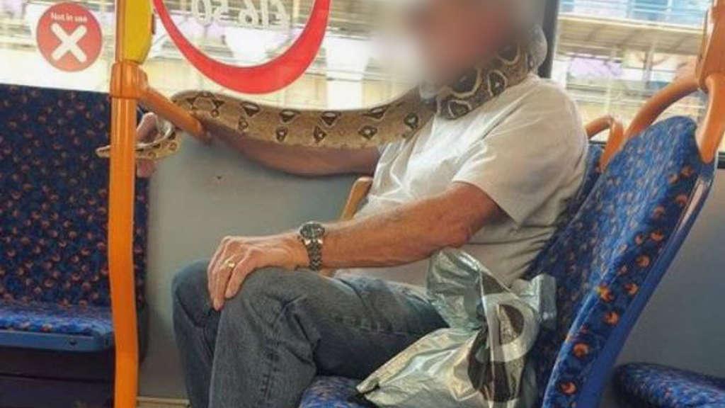 Schlange als Mundschutz in Bus in England