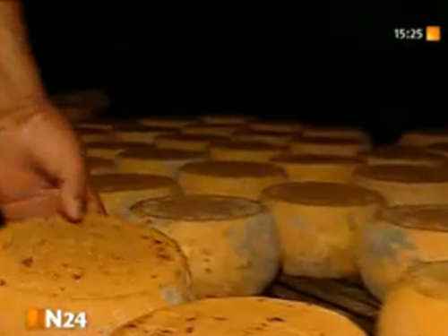 Video des Tages: Ekelkäse Casu Marzu