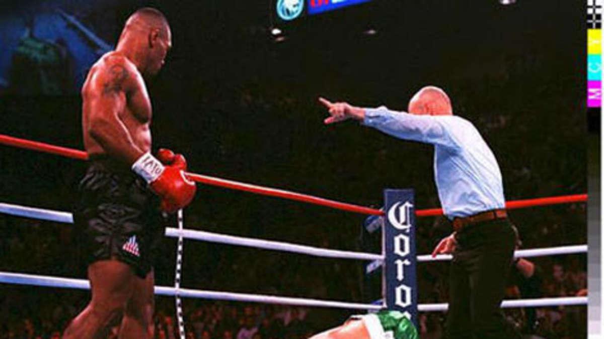 die besten boxer
