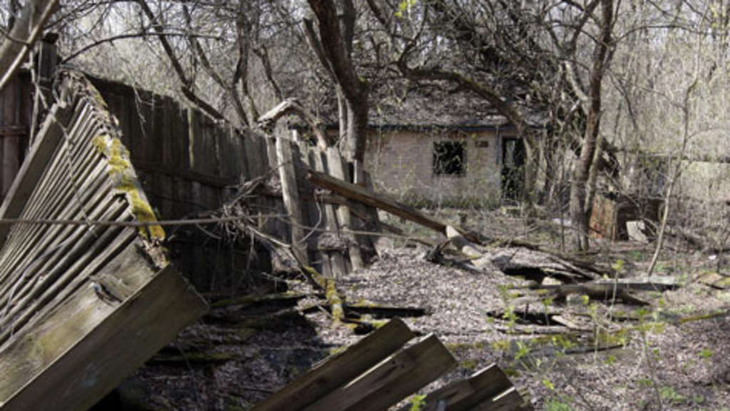 so viel tschernobyl steckt noch in bayern bayern. Black Bedroom Furniture Sets. Home Design Ideas