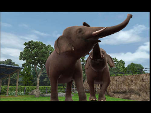 Screenshots aus Zoo Resort 3D