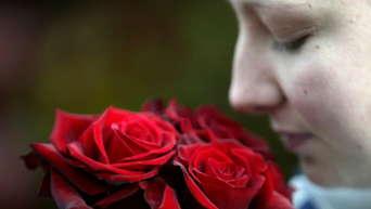Netto blumen valentinstag
