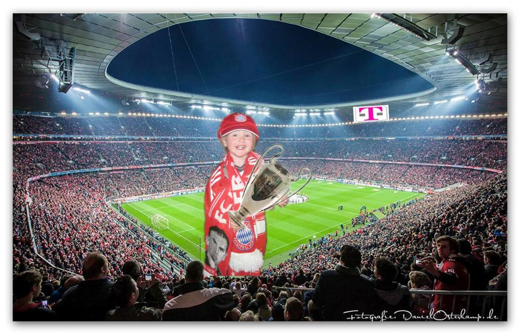 Allianz arena fick by snahbrandy - 3 1
