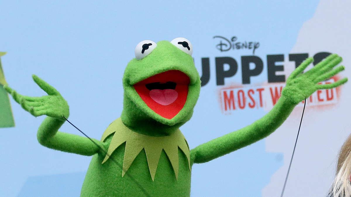 Kermit Bilder