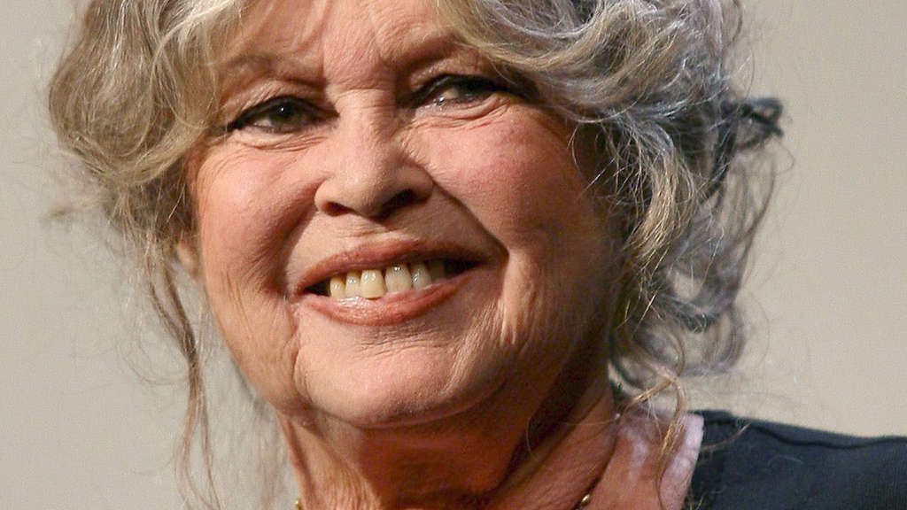 Brigitte Probeabo brigitte bardot findet ruhestand langweilig tv