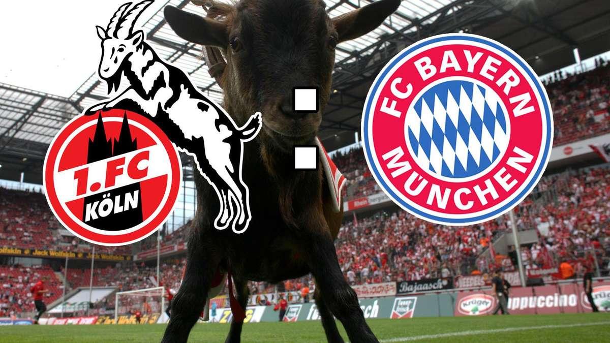 Fc Bayern 1 Fc Köln
