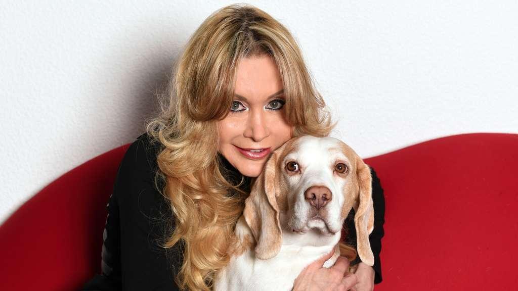 Dolly Buster heilt Beagle von der Last an der Lust   Tiere