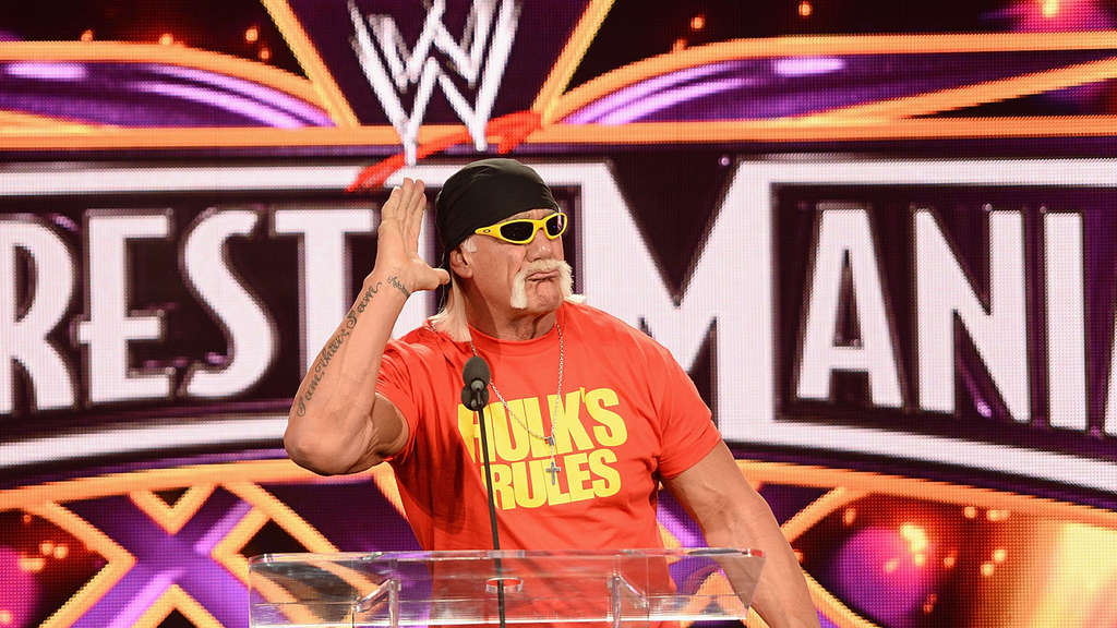 hulk hogan nach wwe rauswurf ich bin kein rassist stars. Black Bedroom Furniture Sets. Home Design Ideas