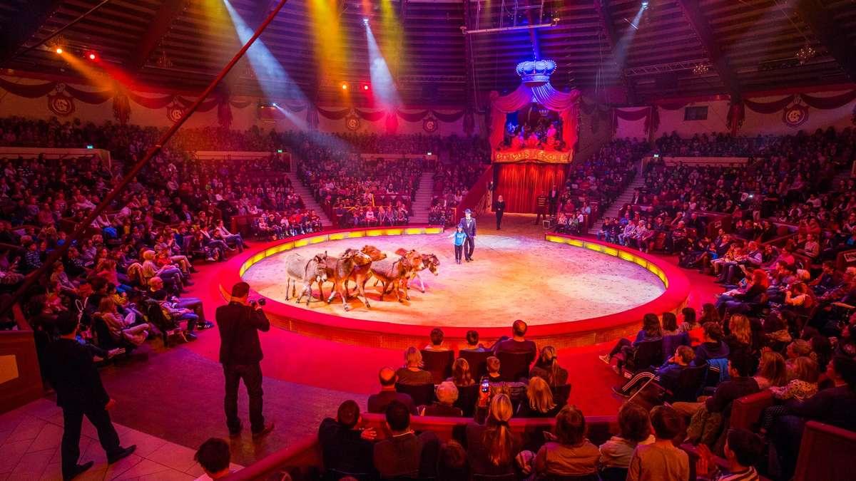 Circus Krone Bilder