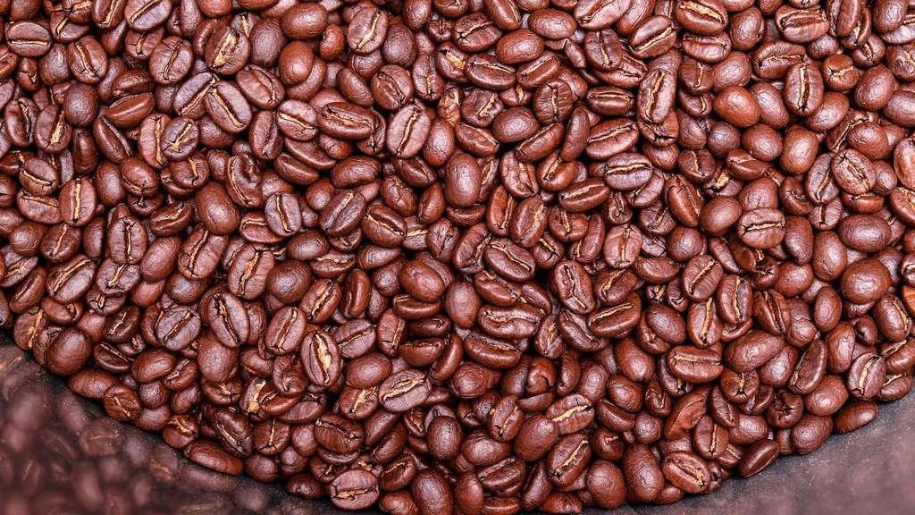aktuelle studie wo der kaffee wie viel kostet gastro. Black Bedroom Furniture Sets. Home Design Ideas