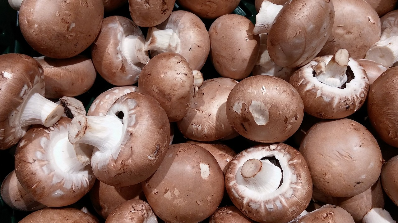 Aldi Nord Kühlschrank Juli 2017 : Aldi nord trader joe s spare ribs bbq produkttester von