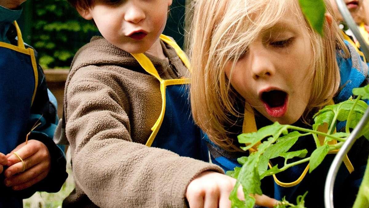 An Eltern, die ihre Kinder vegan ernähren: Vorsicht!