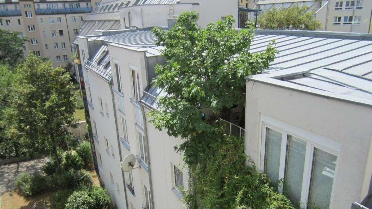 Urteil gegen ahorn auf balkon der baum muss weg maxvorstadt for Balkon baum winterhart