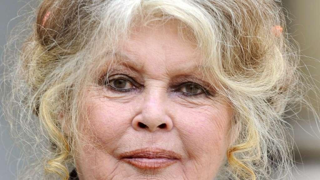Brigitte Probeabo brigitte bardot jetset badeort tropez ehrt filmlegende