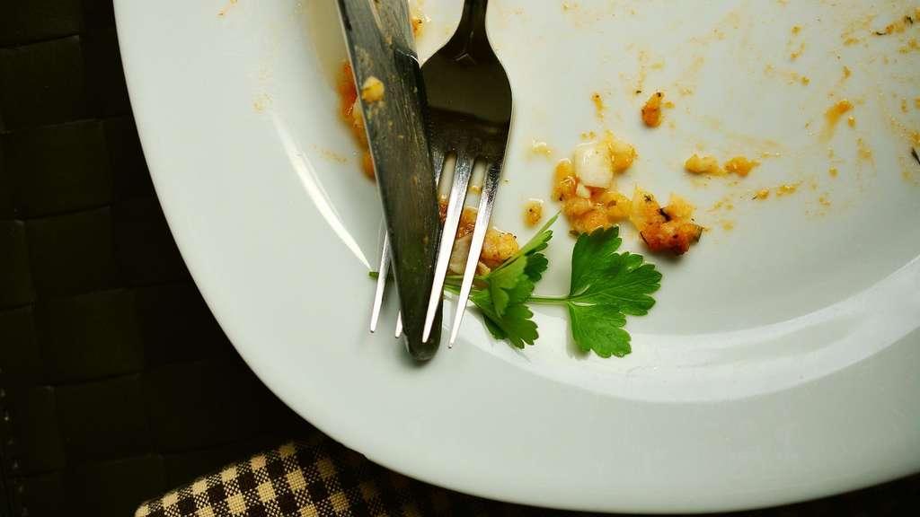 Essen Aufwarmen In Der Mikrowelle So Geht Es Richtig Gastro