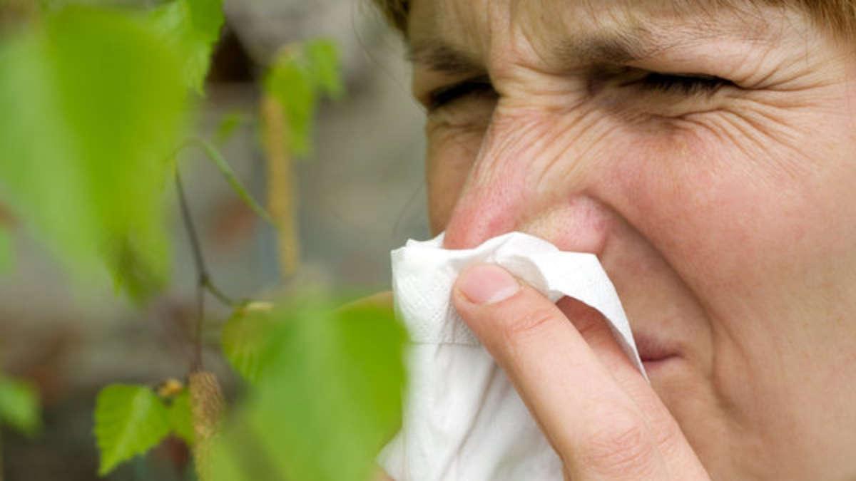 meteorologe-warnt-nun-droht-uns-ein-gewaltiger-pollensturm
