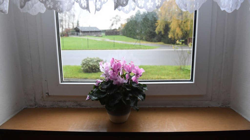 mutter hat genialen trick um zimmerpflanzen neues leben einzuhauchen wohnen. Black Bedroom Furniture Sets. Home Design Ideas