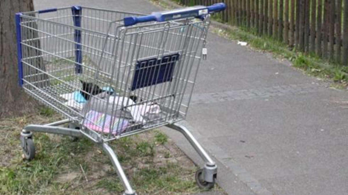 Aldi-Einkaufswagen-enth-lt-Horror-Fund-Inzwischen-wurde-der-Besitzer-ausfindig-gemacht