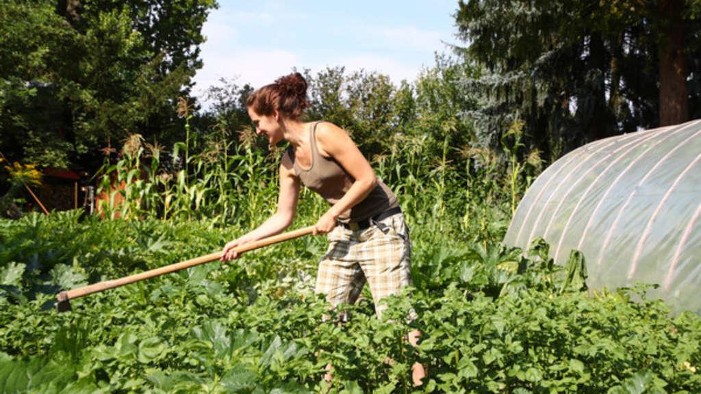 Frau schüttet etwas Essig auf Pflanzen - dabei geschieht absolut Überraschendes